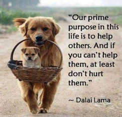helping-others-quote-3-picture-quote-1
