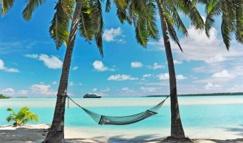 110-Caribbean-Unknown-Hammock-